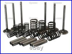 Engine Valve Kit for Perkins 3.152/144 Diesel Fordson Dexta IMT 539 542 Tractor